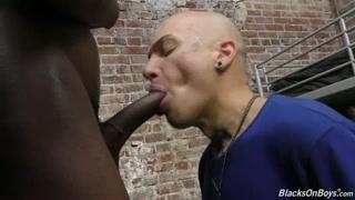 Porno gay in prigione con il nero che incula
