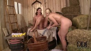Troie lesbiche campagnole nella paglia