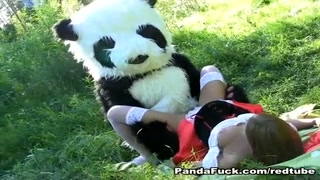 Scopata panda peluche